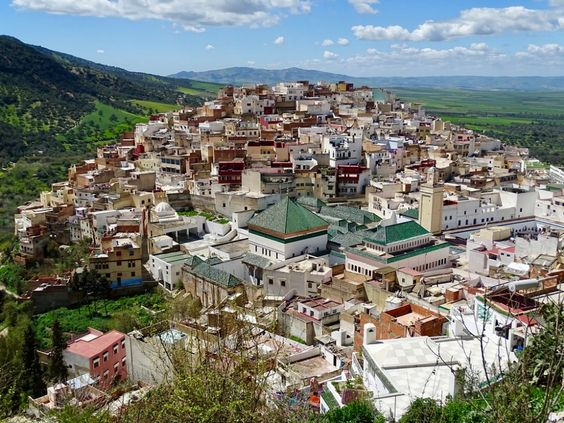 Private day trip from Fes to Volubilis and Meknes