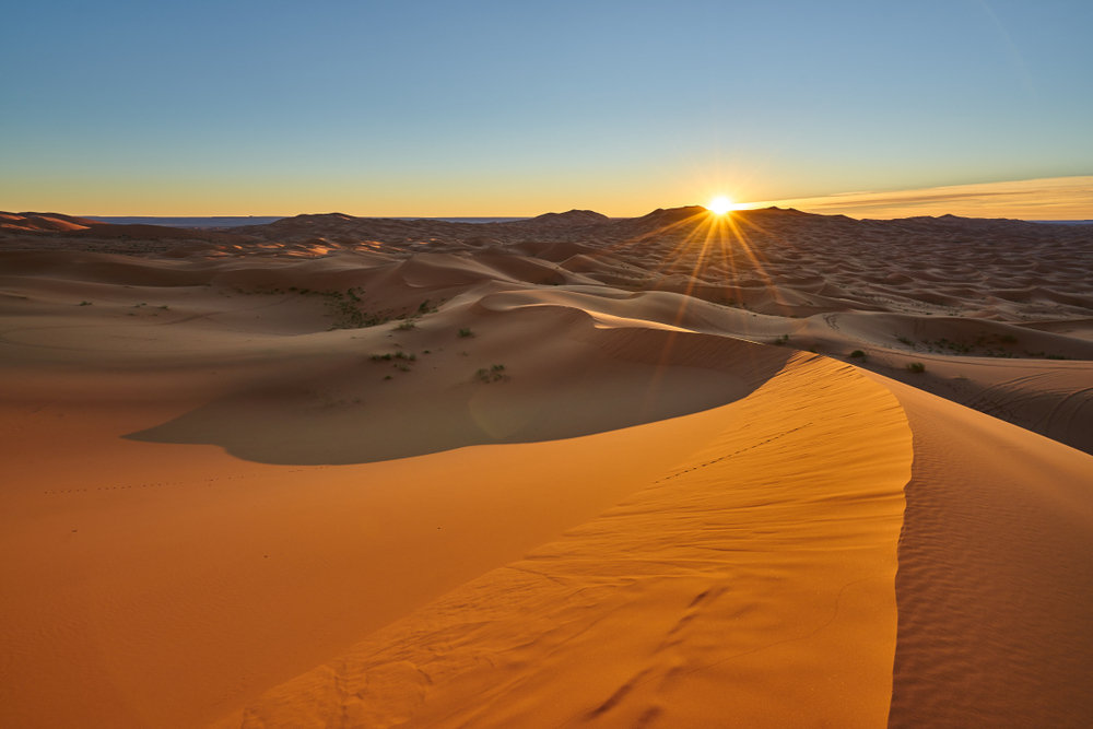 1 hours Sahara Quad Biking Adventures in Merzouga desert