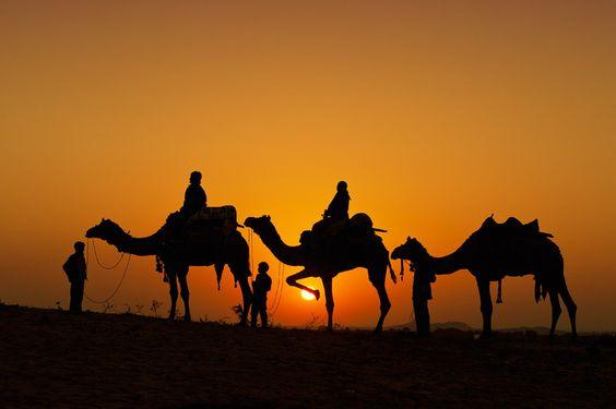 sunset camel trek