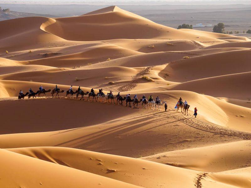 2 Nights camel trekking