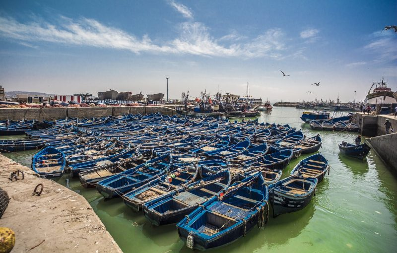 day trip from agadir to Essaouira