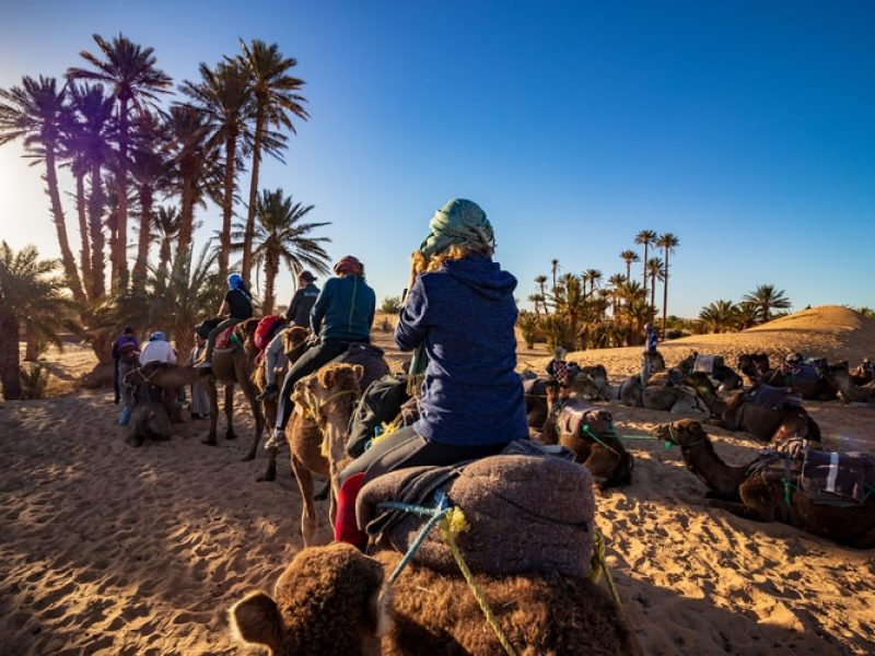 Overnight Camel trek Merzouga